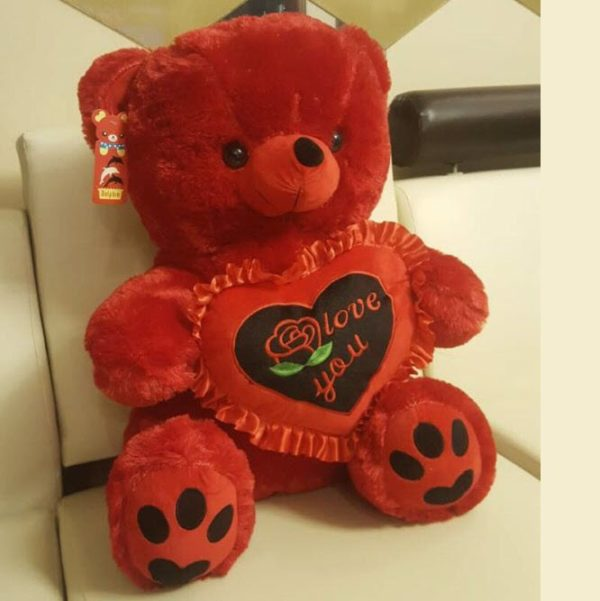 Radiant Red Teddy Bear 22 Inches