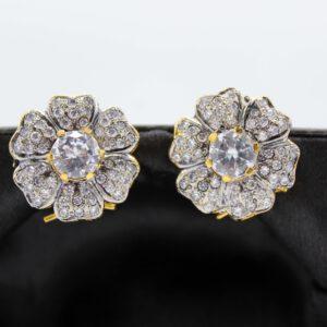 Buy Fancy White Stone Golden Earrings in Pakistan